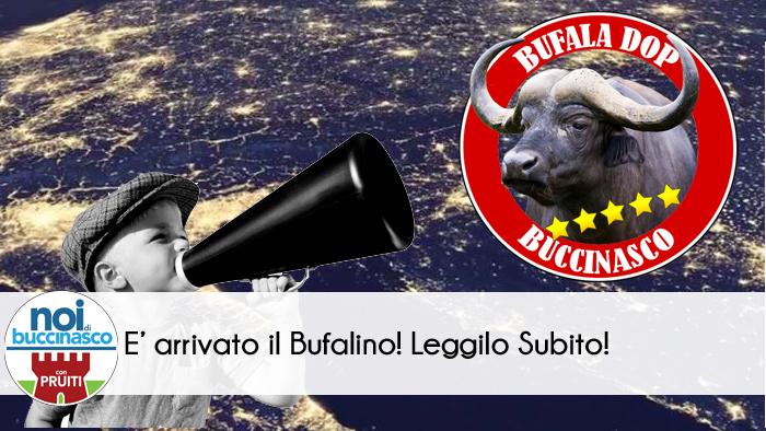 Il Bufalino Nuovo Numero